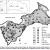 Sukcese mechorostů je výsledkem adaptace a změn v substrátu - případová studie z ostrova Moricsala (Lotyšsko)